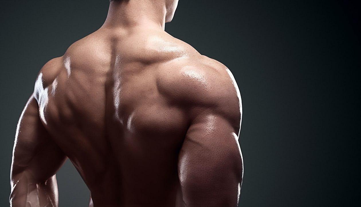 The Best Home Shoulder Workouts For Getting Bigger Delts